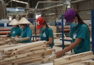 Vietnam reaches agreement with US on illegal timber control