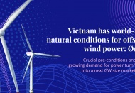 Vietnam has world-class natural conditions for offshore wind power: Orsted