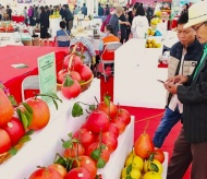 Hanoi cooperates with localities to boost sales of OCOP products