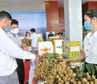 Sale promotion of Vietnamese fresh longan and specialties to int'l consumers