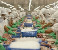 Vinh Hoan seafood processor leads investment into cell-based meat startup