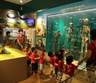 Hanoi to build a premier Museum of Nature