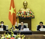 Vietnam works on single Covid-19 response policy
