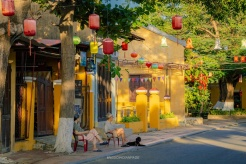 Vietnam among the top countries loved by Digital Nomads globally